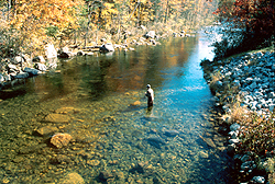 Fishing in maine for Fishing lakes near me